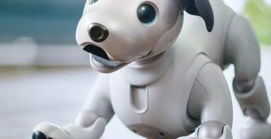 mascotas robots para niños